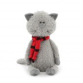 Buddy the Cat in scarf